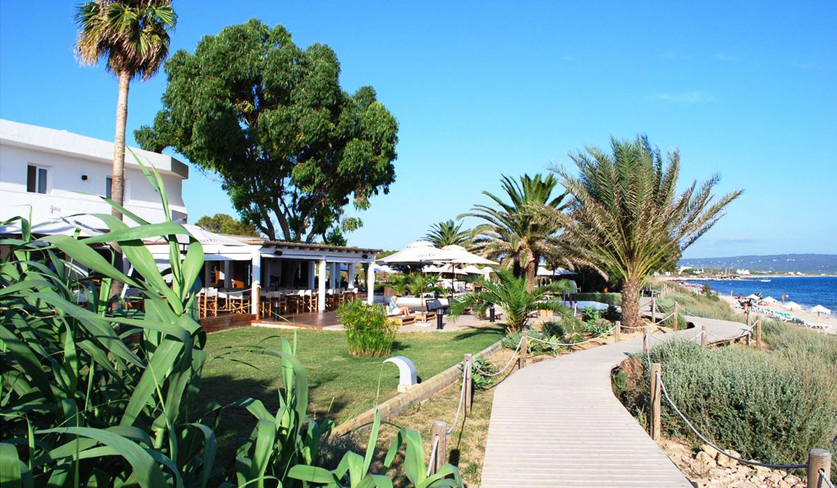 Ibiza guide urban junkies - Hotel gecko beach club formentera ...